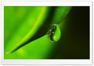 Water Drop Macro