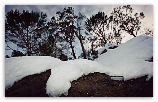 Download Snow UltraHD Wallpaper