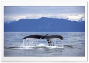 Alaska Frederick Sound...