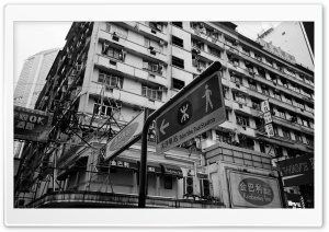Hong Kong Buildings Black And...