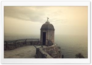Monacos Seagull