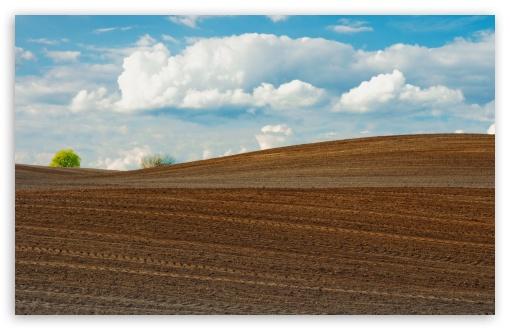 Download Farm Field UltraHD Wallpaper