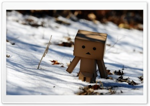Danbo Winter