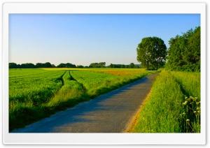 Summer Landscape Nature 5