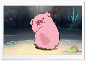 Cute Funny Piggy