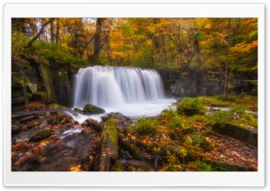 Forest Waterfall Autumn