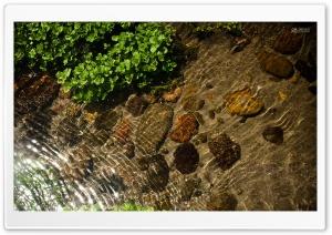 Extra Clean Water-CS9 Premium...
