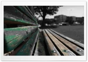 A Bench