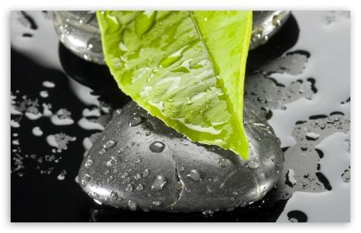 Download Zen Stone And Leaf UltraHD Wallpaper