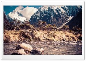 Monkey Creek In New Zealand