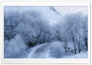 Winter Road