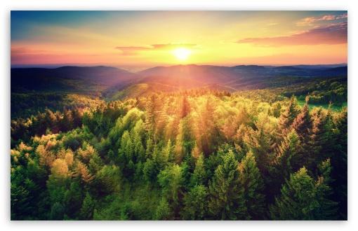 Download Mountains Woods, Sunset UltraHD Wallpaper