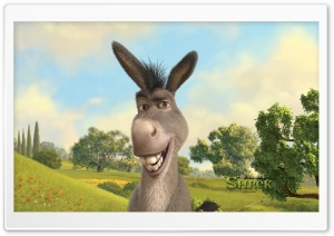 Donkey, Shrek The Final Chapter