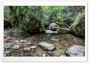 Martinet Creek Aiguafreda,...