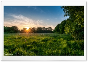 Meadow Sunset.