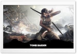 Tomb Raider Survivor (2013)