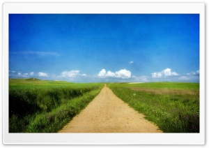 Beautiful Path - Grass Fields