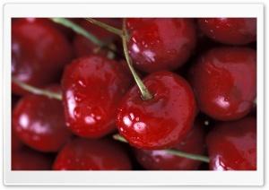 Cherries Close Up