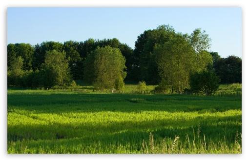 Download Summer Landscape Nature 9 UltraHD Wallpaper