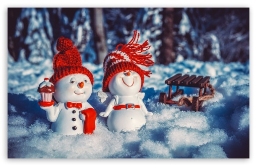 Download Snowman Macro UltraHD Wallpaper