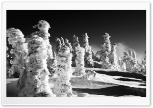 Snow Statues BW