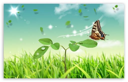 Download Dreamscape Spring 6 UltraHD Wallpaper