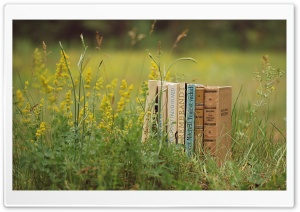 Old Books Outdoors