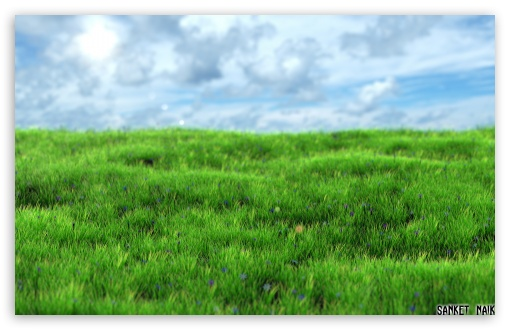 Download Realistic Grass UltraHD Wallpaper