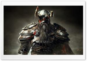 The Elder Scrolls Online Nord