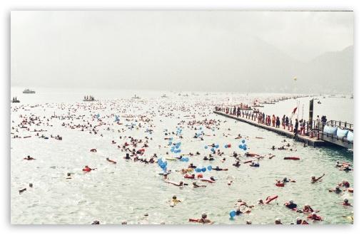 Download Happy Swimmers UltraHD Wallpaper