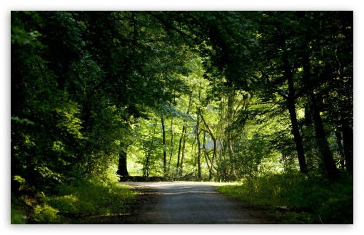 Download Nature Landscape 50 UltraHD Wallpaper