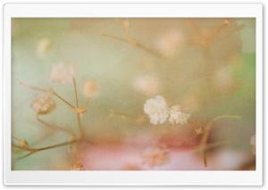 Vintage Flower Background