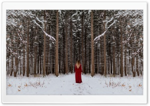 Woman in Red dress, Forest...