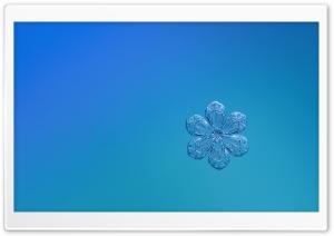 Cute Snowflake