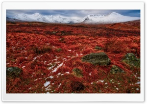 Red and White Mountain Landscape
