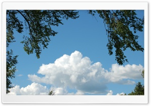 Moril-Cloudy Sky