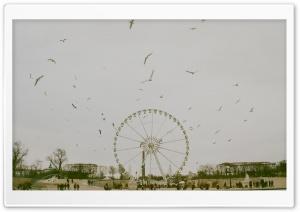 Paris Vintage Photography