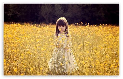 Download Cute Child In A Flower Field UltraHD Wallpaper