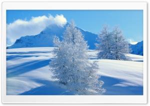 Frozen Spruces Mountains