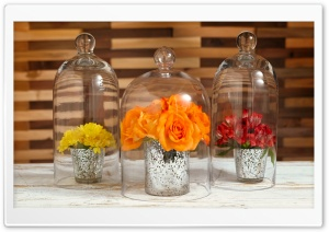 Flowers Under Glass Cloches