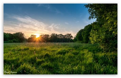 Download Meadow Sunset. UltraHD Wallpaper