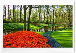 Famous Tulip Garden in Holland
