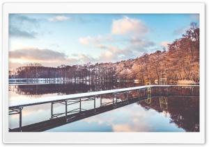 Pond, Winter
