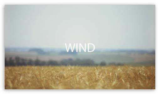 Download Field Wind UltraHD Wallpaper