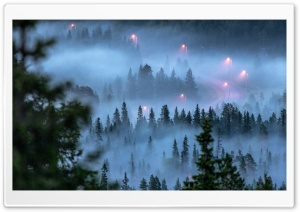 Winding Mountain Road, Fog,...