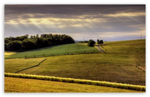 Download Countryside Field UltraHD Wallpaper