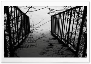 Stairs Winter