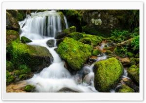 Mountain Creek Rocks Long...