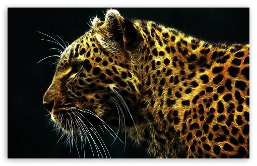 Download Cheetah In Fire UltraHD Wallpaper