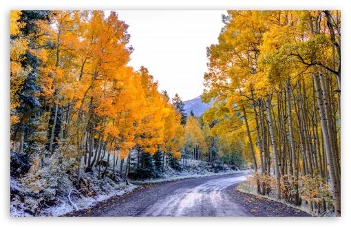 Download Autumn Winter UltraHD Wallpaper